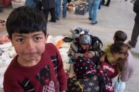 BIT PAZARı - 'Bit Pazarı'nda 3 Yıl Süren Fotoğraf Çalışması