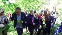 Düzce'de Protokol Üyelerinin 'Şifalı Ot' Mesaisi