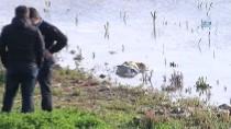 OLTA - Sazlıbosna Barajında 5 Yaşında Kız Çocuğu Cesedi Çıktı