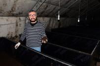 SOLUCAN GÜBRESİ - Ayda 3 Ton Organik Solucan Gübresi Üretiyor