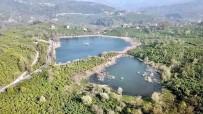 SEFAKÖY - Fatsa Gaga Gölü Büyülüyor