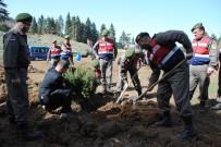 Jandarmadan Ağaçlandırma Seferberliğine Destek