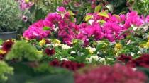 'Turizm Başkenti'nde İlkbahar Bir Başka Güzel