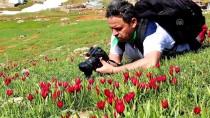 KAR KALINLIĞI - Doğa Harikası Eğrigöl'e Fotoğrafçı İlgisi
