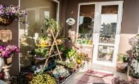 En Güzel Bahçe Ve Balkon İçin Geri Sayım Başladı