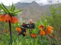 DAĞCI GRUBU - Hakkarili Dağcılar Çiçek Vadisine Ziyaret