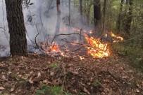 Ordu'da Ormanlık Alanda Örtü Yangını