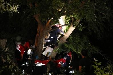 Ağaçtaki araçtan son anda kurtarıldılar
