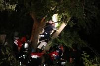 Şarampole Devrilen Otomobil Ağaçta Asılı Kaldı Açıklaması 4 Yaralı