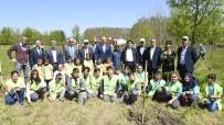 HAMZALı - Tekkeköy Yeşille Bütünleşti