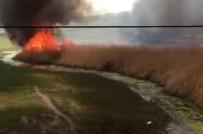 REHABİLİTASYON MERKEZİ - Van'da Hayvan Neslini Tehlikeye Sokan Yangın