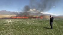 REHABİLİTASYON MERKEZİ - Van'da Sazlık Alanda Yangın