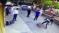 PİTBULL - Aydın'da Pitbullun Kediye Saldırısı Güvenlik Kamerasında