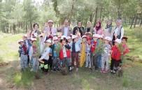 ÇAM AĞACI - Başkan Cahan Ağaç Diken Minik Öğrencileri Yalnız Bırakmadı
