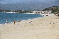 Çalış Plajı Traktörle Temizleniyor