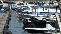HAVA SICAKLIKLARI - Denizanası Nedeniyle Balıkçılar Ağ Toplayamıyor