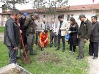 Dumlupınar'da 297 Ağaç Toprakla Buluştu
