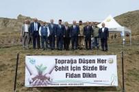 BAL ÜRETİMİ - Erzurum'da Fidanlar Toprakla Buluştu
