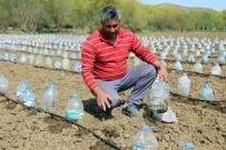 HOBİ BAHÇESİ - Hurdacıdan Aldığı 3 Bin Pet Şişeyle Sera Yaptı