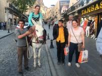 Mardin'in Kadrolu Eşekleri Turizmin De Hizmetinde