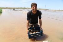 (Özel) Seraları Basan Su Yüz Binlerce Liralık Zarara Neden Oldu