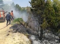 Pazarlar'da Orman Yangını