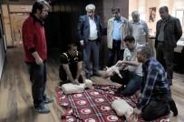 MAMAK BELEDIYESI - Belediye Personeline 'İlk Yardım' Eğitimi