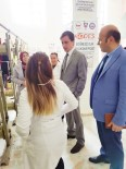 Çüngüş'te 'Sevdiğine Sözü Olan Bir Kilim Dokur' Projesi
