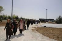 ERTUĞRUL ÇALIŞKAN - Karaman Belediyesinin Hanımlar İçin Düzenlediği Şehir Gezilere Devam Ediyor