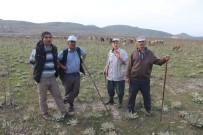 ASGARI ÜCRET - Kütahyalı Çobanlar Eşlerine Sigorta Desteği İstiyor