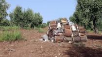 TÜRK SILAHLı KUVVETLERI - TSK Afrin'de Evlere Tuzaklanan Bombaları İmha Etti