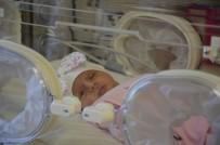 RÖNTGEN - Akciğerlerinde Hava Kaçağı Oluşan Derin Bebek Tüple Hayata Tutundu