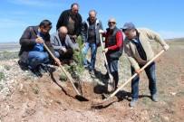 HASAN ŞIMŞEK - Ata'ya Giden Yolu 11 Kilometre Boyunca Ağaçlandırdılar