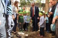 Cizre'de Ağaç Sevgisi Bilincini Geliştirmek İçin Etkinlik Düzenlendi