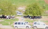 Cizreliler Hafta Sonunu Mesire Ve Piknik Alanlarında Geçirdi