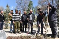 Çorum'da Mezarlıklara 5 Bin Gül Fidanı Dikildi