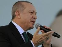 HALUK PEKŞEN - Cumhurbaşkanı Erdoğan, CHP'li Pekşen'e sert çıktı