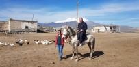 SINDELHÖYÜK - Piknikçiler Sultan Sazlığı'na Akın Etti