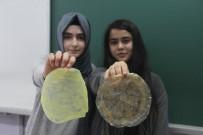 ZERDEÇAL - Zararlı Plastiklerin Yerine, Biyolojik Plastik Ürettiler