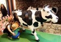 Çocuklar Ali Baba'nın Çiftliği'nde Çiftçi Oldu