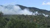ORMAN İŞÇİSİ - Kazdağları'nda Çıkan Yangın Kontrol Altına Alındı