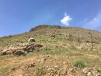 Solhan'daki Kayalıklar İçin Önlem Alınacak