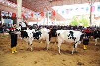 BURDUR MERKEZ - Teke Yöresi 4. Tarım Ve Hayvancılık Fuarı'na Destek