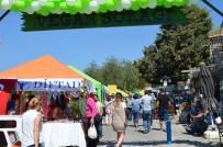 APOLLON TAPINAĞI - Türkiye Tek Vegan Festivali Didim Vegfest Başladı