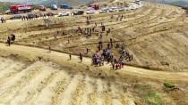 YEREL YÖNETİMLER - Yangının Kül Ettiği Alana 35 Milyon Tohum