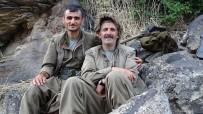 Ağrı'da PKK'ya Ağır Darbe Açıklaması 16 Terörist Etkisiz Hale Getirildi