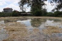 Barajdan Bırakılan Su Taşkına Neden Oldu