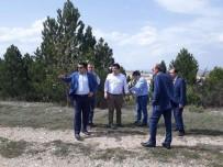 Çavdarhisar'da 'Tabiat Parkı' Çalışmaları