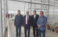 Sandıklı Belediyesi Jeotermal Isıtmalı Çiçek Serası İle Sebze, Meyve Kurutma Tesisin Yapımını Tamaladı