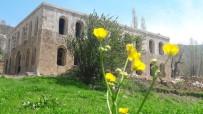 Şemdinli Nehri Kültür Mirası Canlanıyor